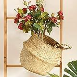 Vovomay Seagrass Wicker Basket Wicker Basket Flower Pot Folding Basket Dirty Basket Storage Home Decor (Beige)