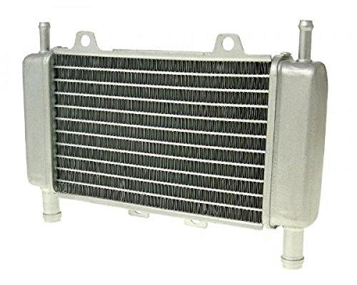 /Gilera Runner Radiatore raffreddamento ad acqua radiatore/ dal 2005