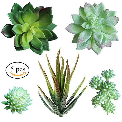 Supla Pack of 5 Assorted Artificial Echeveria Succulent Picks in Flocked Green and Green 4