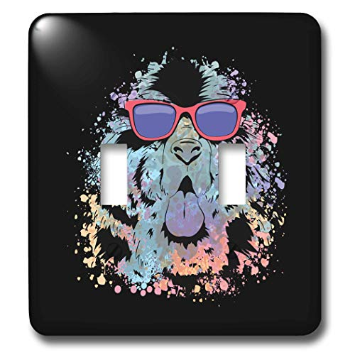 (3dRose Sven Herkenrath Dogs - Watercolor Style of a Newfoundland Dog with Glasses - Light Switch Covers - double toggle switch (lsp_306924_2))