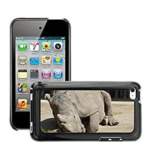 Etui Housse Coque de Protection Cover Rigide pour // M00117244 Rhino Paquidermo Mentir Zoo Zoo Animal // Apple ipod Touch 4 4G 4th