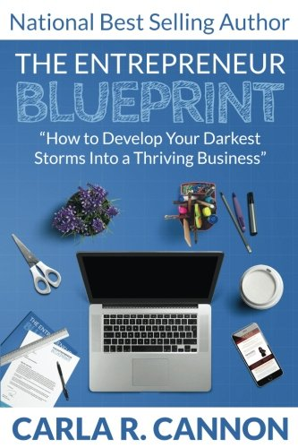 The Entrepreneur Blueprint: How to Develop Your Darkest Storms into a Thriving Business