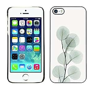 FECELL CITY // Duro Aluminio Pegatina PC Caso decorativo Funda Carcasa de Protección para Apple Iphone 5 / 5S // Branch Leaves Tree Grey Autumn Art