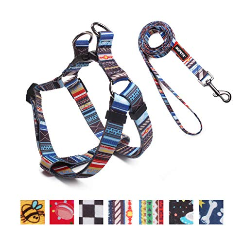QQPETS Dog Harness Leash Set, Adjustable Vest Durable Heavy Duty Small Medium & Large Dogs Perfect for Walking Running Training (S(14