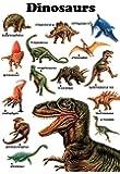 Dinosaurs Poster, Tryannosaurus Rex, Triceratops, Stegosaurus, Megalosaurus