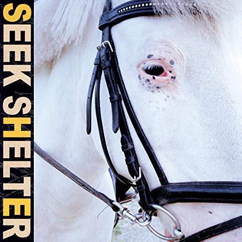 Seek Shelter: Iceage: Amazon.es: CDs y vinilos}