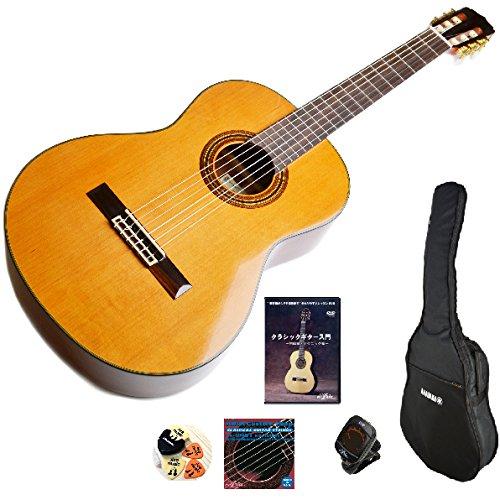 アリア クラシックギター 初心者セット Aria A20 7点入門セット   B072V2WL2N