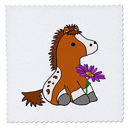 Appaloosa Pony - 3dRose All Smiles Art Animals - Cute Funny Baby Appaloosa Pony Horse with Purple Daisy - 6x6 inch Quilt Square (qs_288199_2)