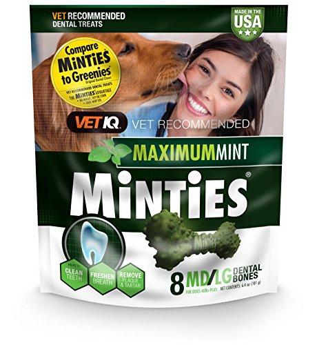 - Vetiq Minties Dog Dental Bone Treats, Dental Treats For Dogs, Medium/Large, 6.4Oz