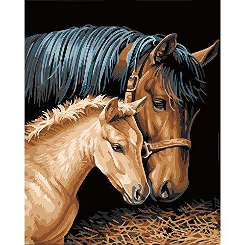D&M DIY Oil Painting Digital Painting Home Decor Lucky Gift Artwork Color by Number No Border 1620