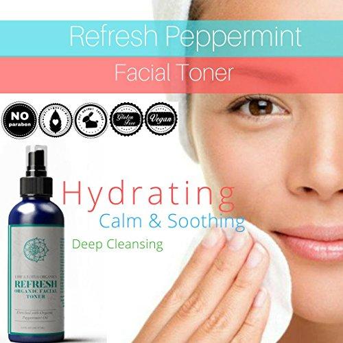 Buy drugstore pore minimizing toner