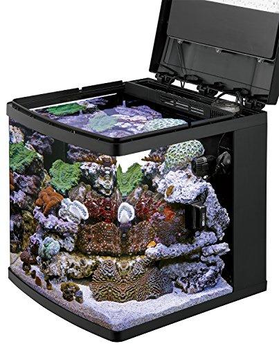 Coralife biocube size 29 reviews compare deals pet for 29 gallon fish tank dimensions