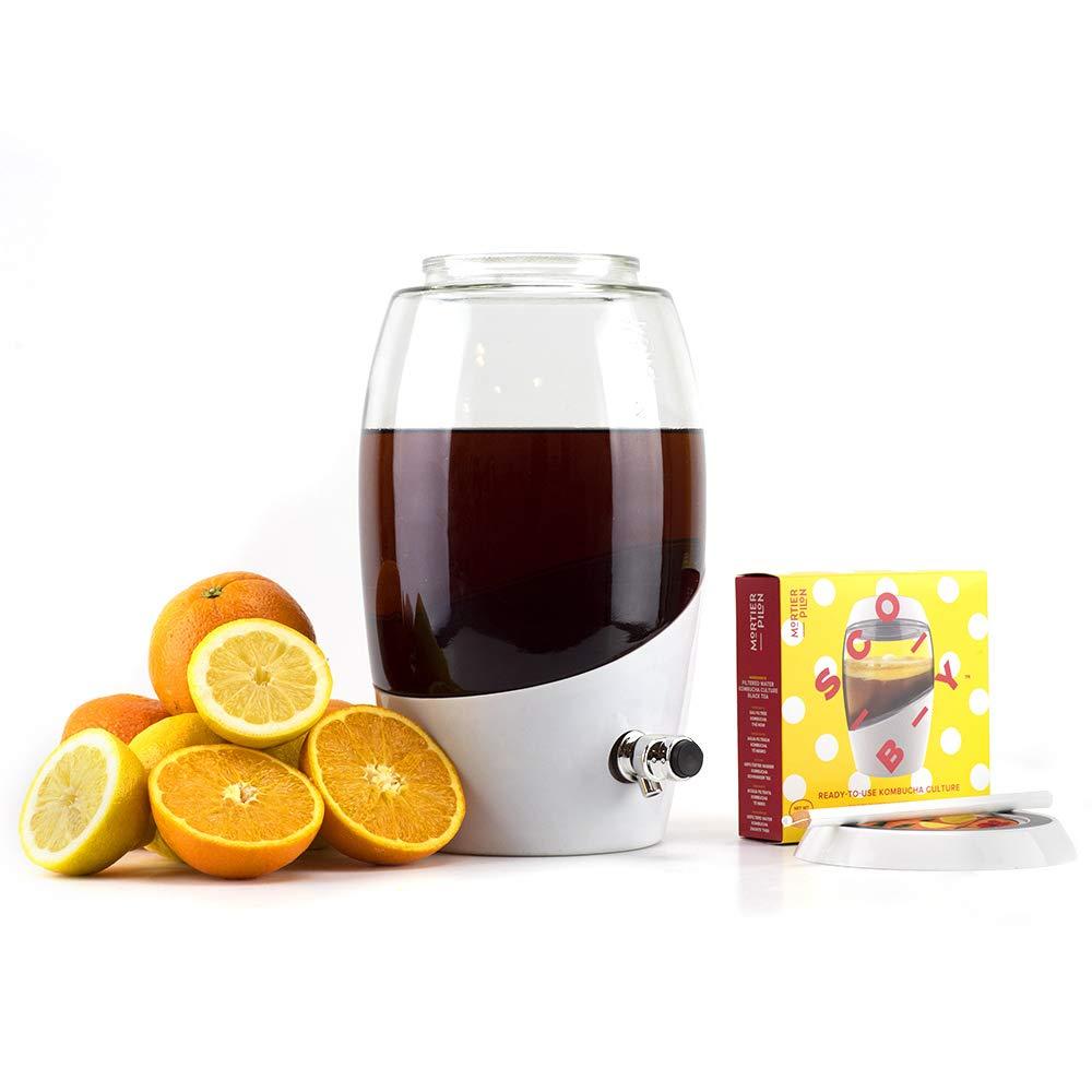Mortier Pilon - Kombucha Starter Kit with 5L Glass Kombucha Jar + Scoby by Mortier Pilon (Image #1)