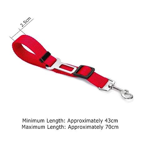 WS-Trend Cinturón de Seguridad Perros con Clip para Coche ...