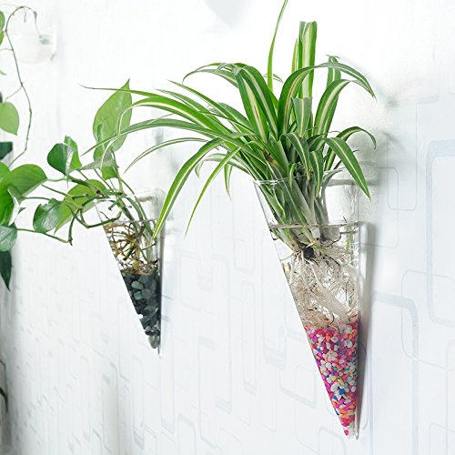 80off Set Of 3 Wall Vases Hanging Air Plant Terrariums Hanging