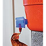 Harris Farms Tap N Drink Waterer