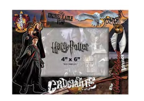 Harry Potter 4x6 Frame Cardboard Hedwig