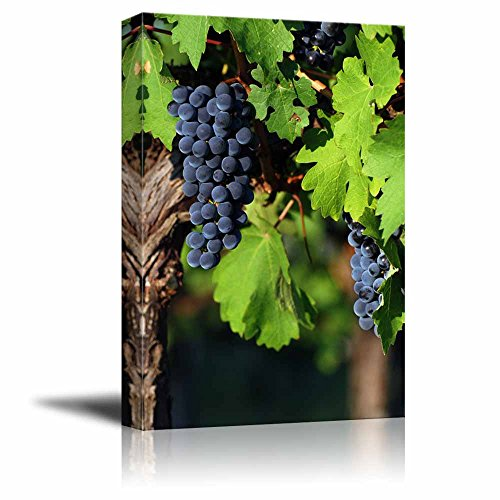 "Wall26 Canvas Prints Wall Art - Italian Vineyard | Modern Wall Decor/Home Decoration Stretched Gallery Canvas Wrap Giclee Print. Ready to Hang - 24"" x 36"""