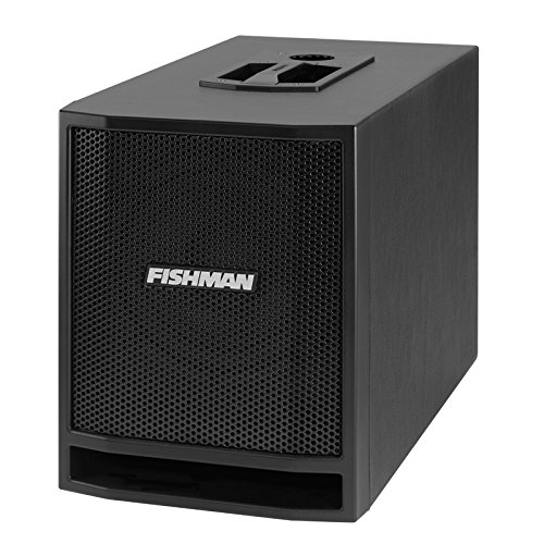 Fishman 300W SA Sub for SA Performance Audio System by Fishman