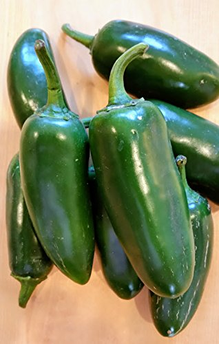 Fresh Jalapenos Chili Peppers 2 lbs.