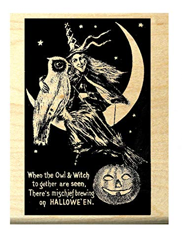Halloween Witch with Owl on Moon Rubber Stamp P5 -