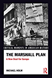 The Marshall Plan: A New Deal For Europe (Critical Moments in American History)