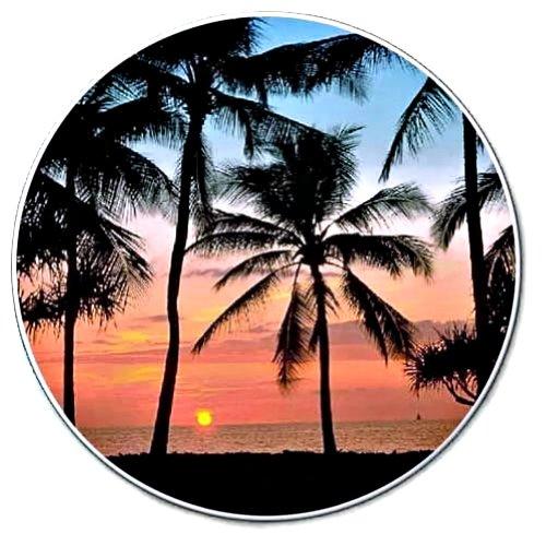 1-X-Palms-Sunset-on-the-Beach-Single-Auto-Coaster