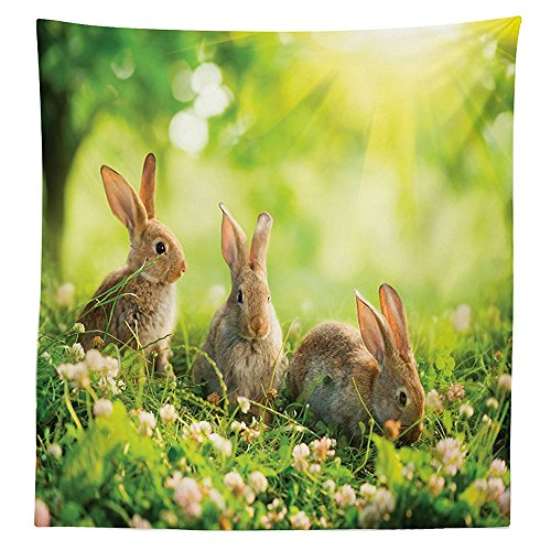 Animal Decor Tablecloth Funny Fluffy Rabbits Bunny Family on Daisies Grass Easter Meadow Fresh Image Dining Room Kitchen Rectangular Table Cover Green Tan - Primitive Easter Grass