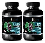Testosterone for man sex - NATURAL L-DOPA 350MG - Mucuna pruriens bulk - 2 Bottle (120 Capsules)