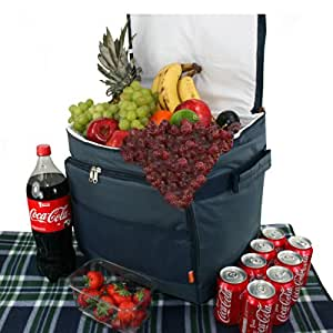 Picnics4fun - Nevera de acampada, 45 L, color azul