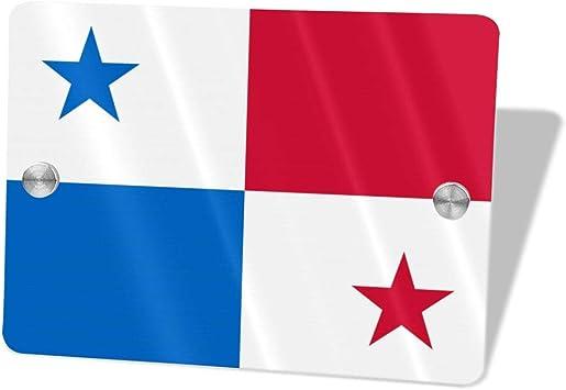 SafeGlo 22/' Telescoping Flag Pole Kit w// Ladder Mount For Motorhome W// USA Flag