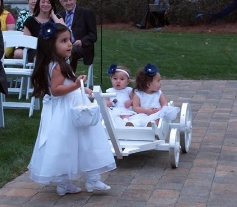 Charming Cinderella Carriage - Gloss White