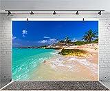Leyiyi 10x8ft Photography Backgroud Seaside Backdrop Ocean Coatline Seawater Waves Sand Beach Rocks Palm Trees Island Wedding Hawaiian Luau Birthday Honeymoon Photo Portrait Vinyl Studio Video Prop