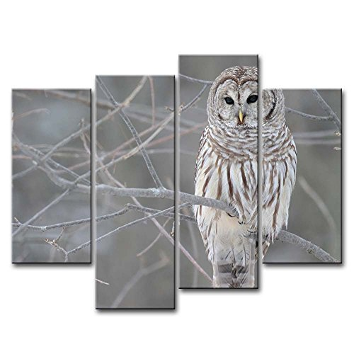 - 4 Piece Wall Art Painting White Owl In The Tree Prints On Canvas The Picture Animal Pictures Oil For Home Modern Decoration Print Decor