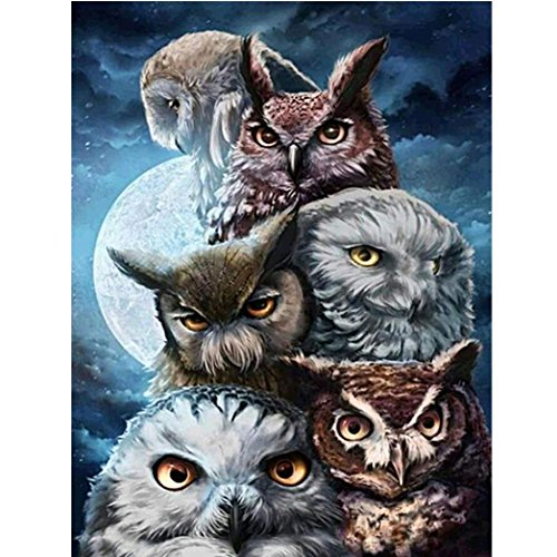 Vacally DIY 5D Diamond Painting by Number Kit,Tiger/Owl Full Drill Diamond Embroidery Kit Home Wall Art Decor (Multicolor 2) ()