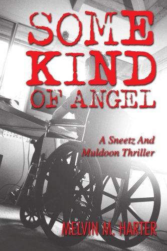 Some Kind of Angel: A Sneetz and Muldoon Thriller pdf