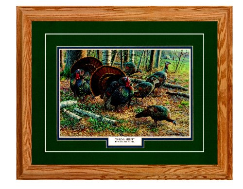 Cynthie Fisher Framed & Matted Wildlife Art Spring (Hunting Framed)