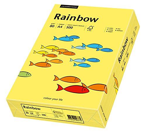 Fogli colorati multiuso A4 80/g//m2 giallo 500/fogli Schneiders/öhne 88042343/Rainbow