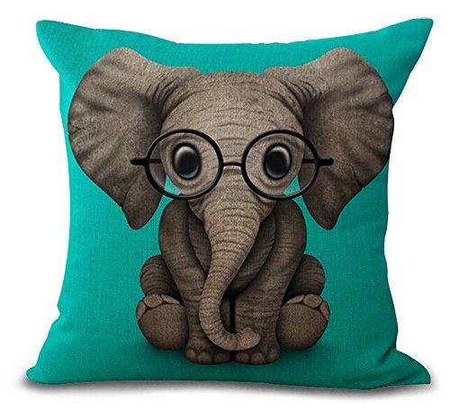 Funny Elephant Amazon Com