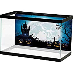 bybyhome Rock Background Aquarium Halloween,Spooky Concept with Scary Icons Old Celtic Harvest Figures in Dark Image Holiday Print,Blue Decals Poster