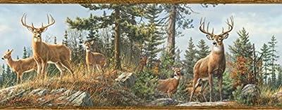 Chesapeake HTM48463B Fern Purple Whitetail Portrait Wallpaper Border