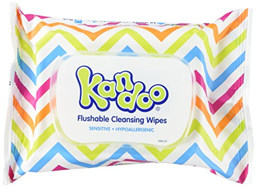Kandoo Flushable 48 Count Sensitive Wipes Soft Tub (Pack of 12)
