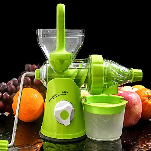 Buy juicer for leafy greens and fruits