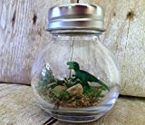 1 Inch T-Rex Dinosaur Desk Pet with Certificate