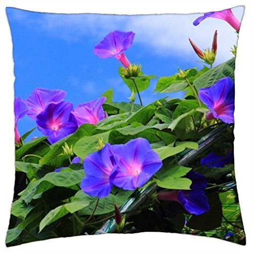 Field of morning glories - Throw Pillow Cover Case (18