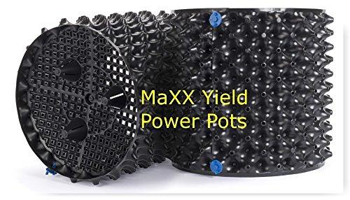 MaXX Yield