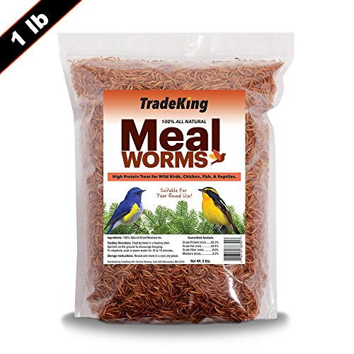 TradeKing 100% Natural Dried Mealworms - High Protein Treat for Wild Birds, Chicken, Fish, Reptiles - Resealable Bag (1 lb) (Feeding Bird Supplies Wild)
