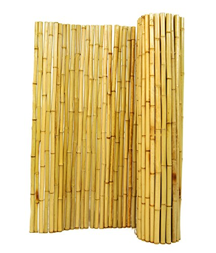Natural Rolled Bamboo Fencing 3/4
