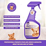 32 Oz Professional-Strength Enzyme Pet Stain