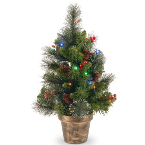 National Tree 2 Foot Crestwood Spruce Tree with Silver Bristle, Cones, Red Berries and 35 Battery Operated Multicolor LED Lights in Bronze Pot (CW7-334M-20)